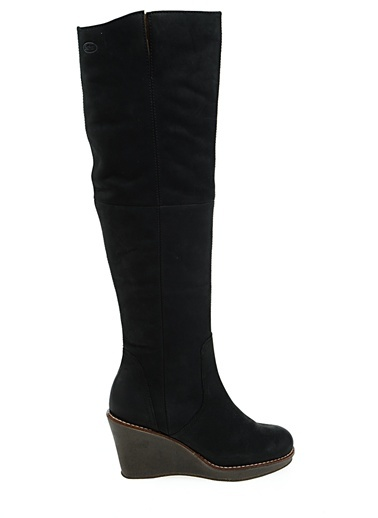 Çizme-Scholl